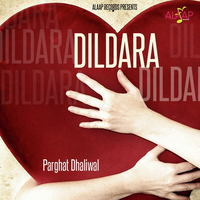 Dildara Song Cover