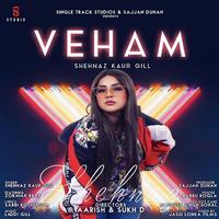 Veham Song Cover