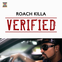 Verified Song Cover