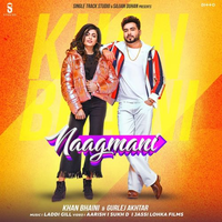 Naagmani Song Cover