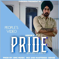 Pride Song Cover