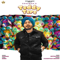 Teddy Tere Song Cover