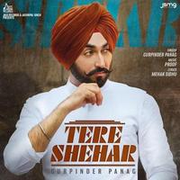 Tere Shehar Song Cover